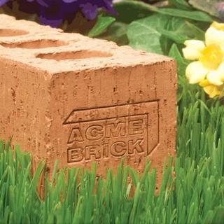 Acme Brick Logo