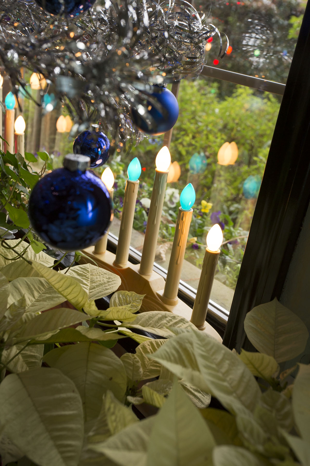 Living the Good Life with Chris H Olsen: The Colors of Christmas